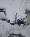 05NAGAOKA-FUYU